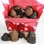 Assorted Chocolate Dipped Fruits